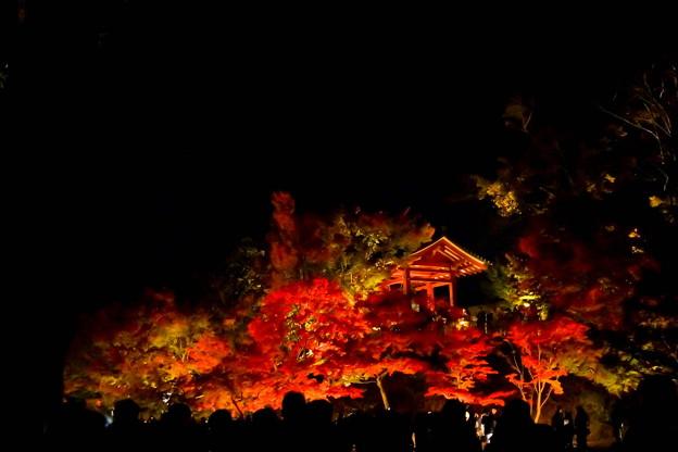 京都 平等院 鳳凰堂