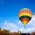 秋 緑地公園散歩 花博開催30周年記念イベント 熱気球