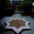 秋 緑地公園散歩 鶴見緑地国際庭園 モロッコ