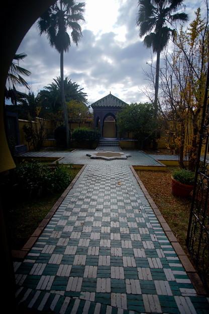 Photos: 秋 緑地公園散歩 鶴見緑地国際庭園 モロッコ 2