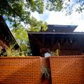 Photos: 秋 緑地公園散歩 鶴見緑地国際庭園 ネパール王国