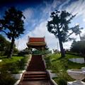 Photos: 秋 緑地公園散歩 鶴見緑地国際庭園 タイ