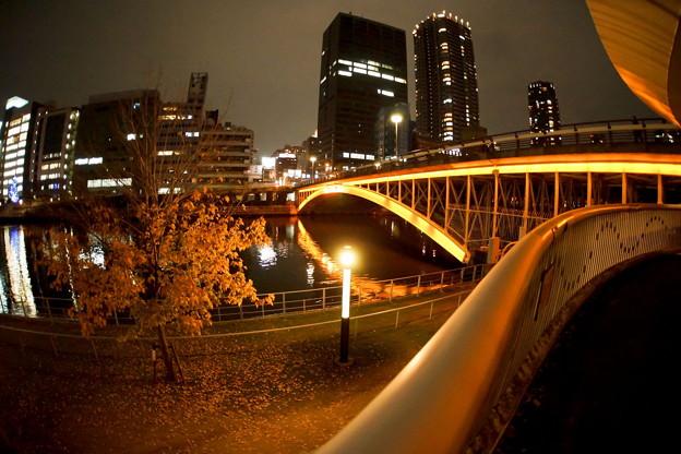 大阪 中之島公園