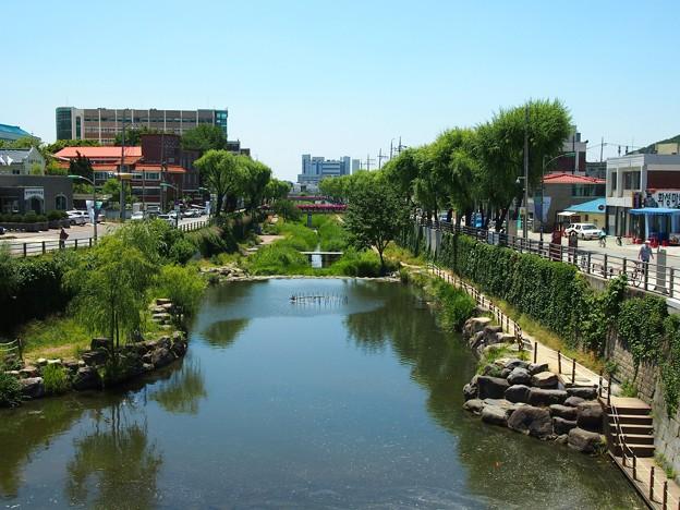 水原川 -水原華城-/Suwon River -Hwaseong Fortress-