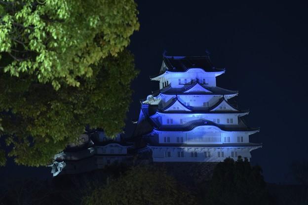 夜の姫路城