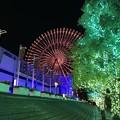 Photos: 夜の天保山
