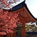 Photos: 大峯山 龍泉寺