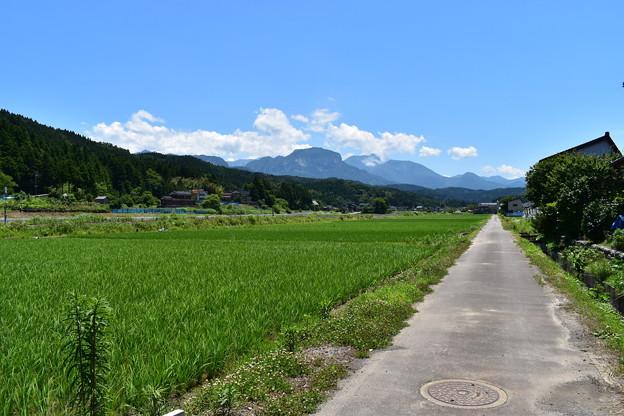 大野の田園風景