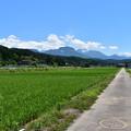 Photos: 大野の田園風景