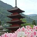 Photos: 久遠寺五重塔