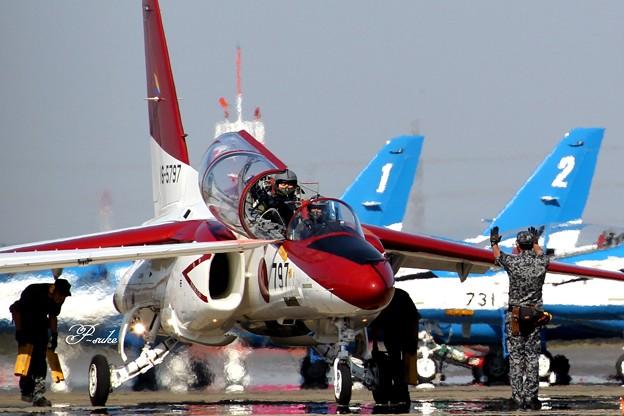 T4 赤と青