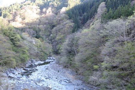 三峯神社神社17