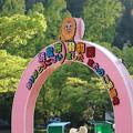 浜松市動物園77