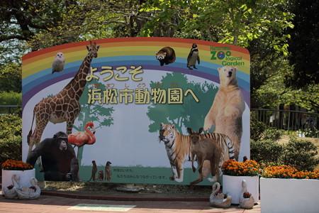 浜松市動物園79