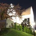 写真: 桜と教会