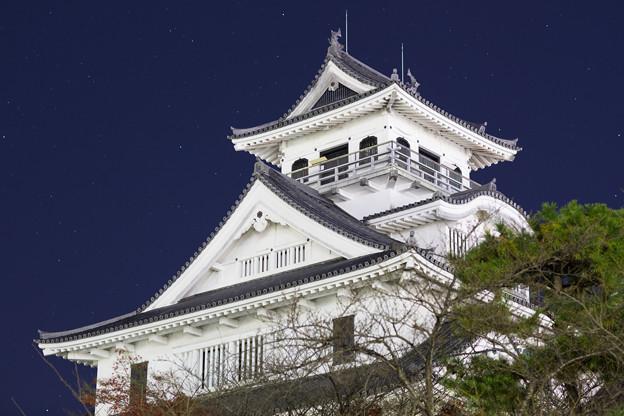 滋賀県長浜城、夜の出会い