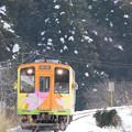 Photos: 雪に負けず!!