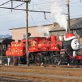 写真: 大井川鐵道 C56 44