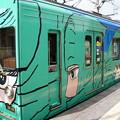 Photos: 伊賀鉄道 200系 SE55