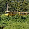三岐鉄道 276
