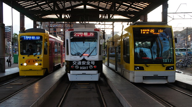 鹿児島市電 9509と9507と1017