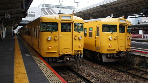 115系 N-19とN-08