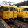 Photos: 115系 N-19とN-08