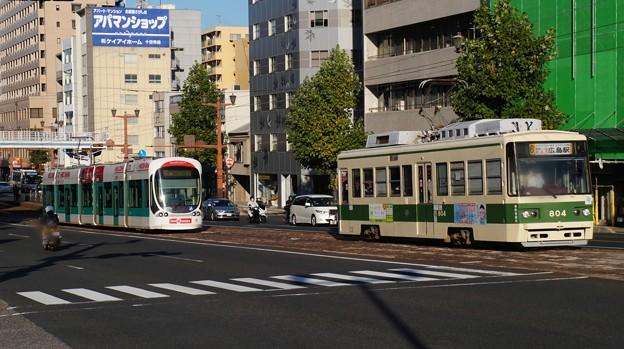 広島電鉄 5101と804