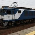 EF64 1008