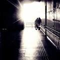 写真: On the way home