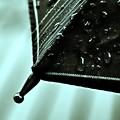 【第133回モノコン】梅雨寒