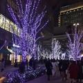 Photos: 宝塚劇場前のイルミネーション