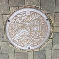 藤枝駅前のマンホール