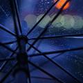 写真: 雨音