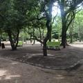 写真: 鶴舞公園_18