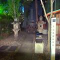 写真: 夜の多治見国長邸跡 - 5