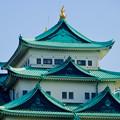 写真: 名城公園から見上げた名古屋城天守閣 - 13:金シャチ