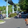 Photos: 大勢の人で賑わってた東山動植物園(2017年5月28日) - 7