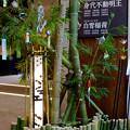 Photos: 大須商店街 万松寺(2017年7月1日) - 8:七夕飾り