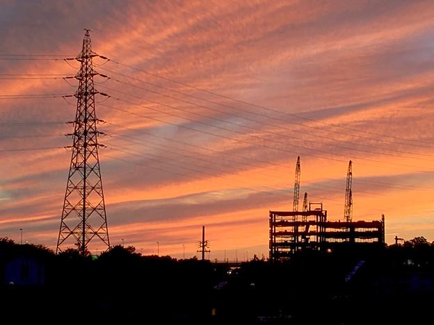 綺麗だった、今日夕方の筋雲 - 5