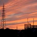 写真: 綺麗だった、今日夕方の筋雲 - 5