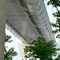 金城ふ頭から見上げた名港中央大橋 - 4