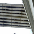 金城ふ頭から見上げた名港中央大橋 - 5