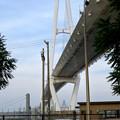 金城ふ頭から見上げた名港中央大橋 - 8