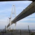 金城ふ頭から見上げた名港中央大橋 - 10