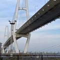 金城ふ頭から見上げた名港中央大橋 - 11
