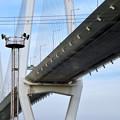 金城ふ頭から見上げた名港中央大橋 - 12
