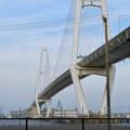金城ふ頭から見上げた名港中央大橋と名港東大橋 - 1
