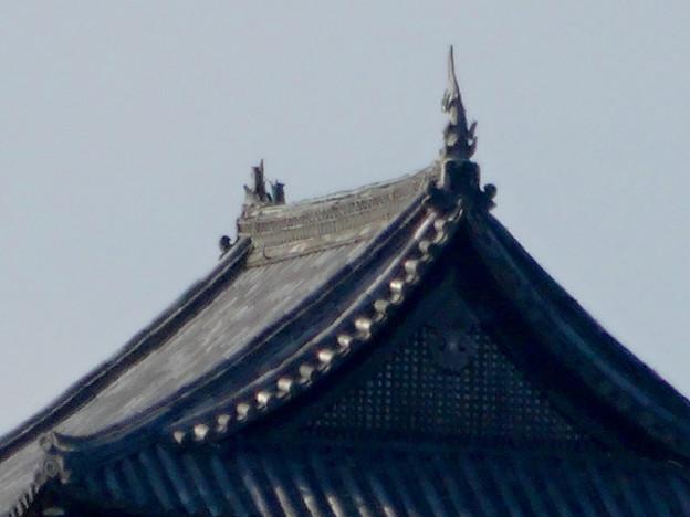写真: 犬山城下町から見上げた、落雷でシャチホコが壊れた犬山城(2017年7月15日) - 4