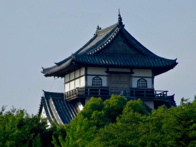 写真: 犬山城下町から見上げた、落雷でシャチホコが壊れた犬山城(2017年7月15日) - 7